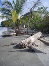 Photo: Vers Punta Cahuita