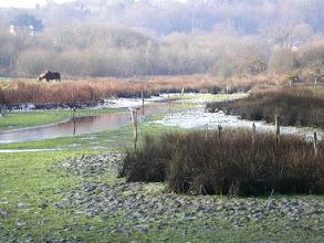 Photo: Coup de froid derrière la petite digue