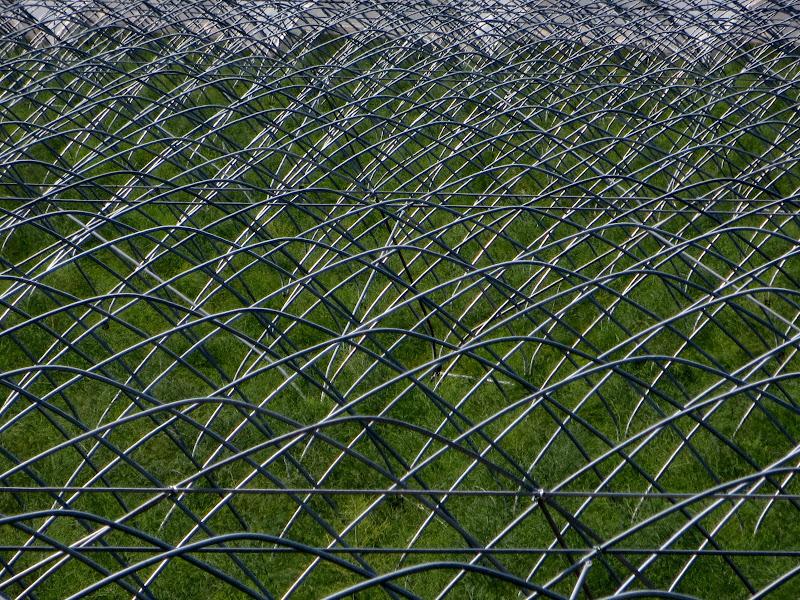 agricoltura e geometria di mariellaturlon