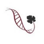 Logo of Domaine Cecillon Cidre Divona