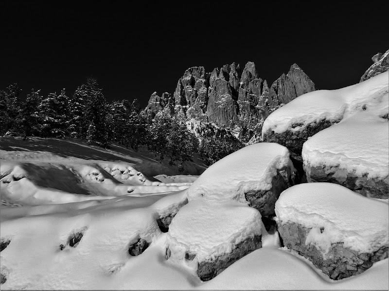 Inverno in bianco e nero di EmmaPhotos