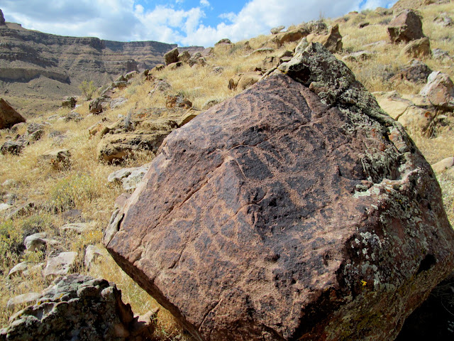 Petroglyph-covered boulder