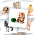 Cards for kids icon