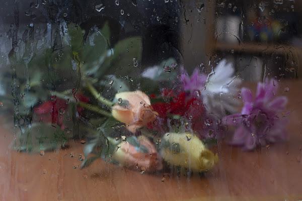 Dopo la pioggia di BiagioG