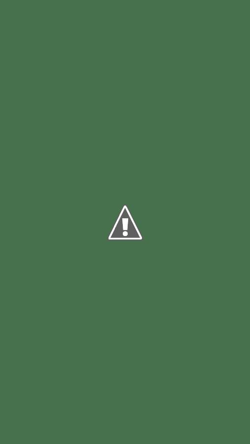 Empty Bowls Volunteers