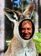 Photo: Year 2 Day 145 -  Kanga Rog at Yatzie's Cafe at Lavers Hill