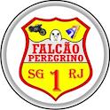 Falcão Peregrino icon
