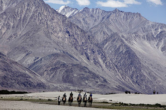 Photo: Tourists ride double hump camels at Nubra valley in Ladakh. (AP)
