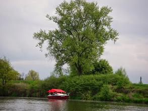 Photo: tutaj często coś pływa