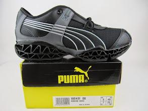 Photo: Puma010