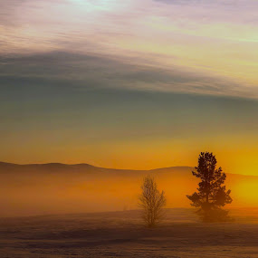 Sunset in fog in the mountain by Roald Heirsaunet - Landscapes Sunsets & Sunrises