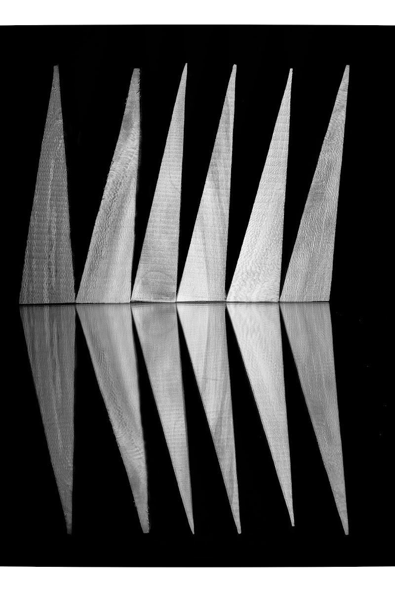 Lisca! di Matteo Faliero