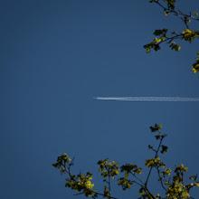 Photo: Pozdrawiamy pasażerów Szanghajskich linii lotniczych. Liczymy, że nie załatwiacie swych potrzeb w tym momencie.