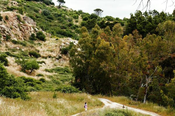 Passeggiata nella valle dell' Eden di AngeloEsse