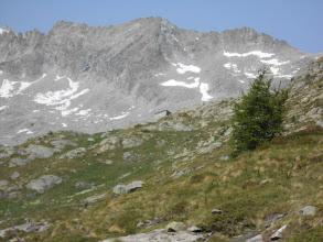 Photo: In vista del Centro glaciologico.