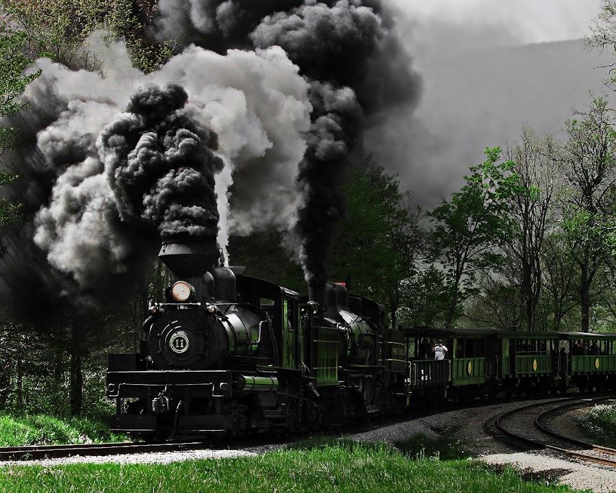 Going Green by Chuck  Gordon  - Transportation Trains ( steam train )