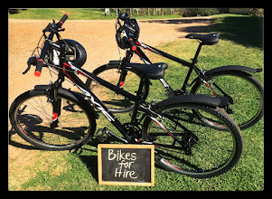 Photo: Quality mountain bikes for rent