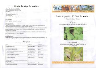 """Photo: Livret de l'atelier """"cuisinons les plantes"""" de Sandrine Bazzo des Ateliers en herbe."""