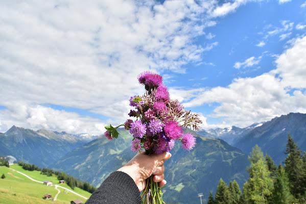 Quel mazzolin di fiori di Ilaria Bertini