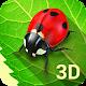 Bugs Life 3D - 3D Live Wallpaper