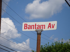 Photo: Bantam, what became of the American Austin