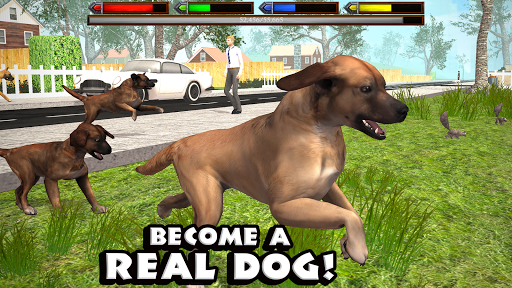 Download Ultimate Dog Simulator For PC 1
