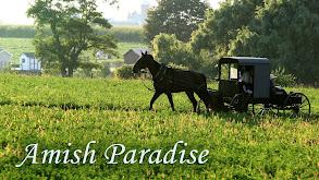 Amish Paradise thumbnail