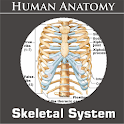 Skeletal System icon