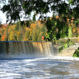 Tahquamenon Falls in Autumn by Bill Diller - Landscapes Waterscapes ( forest, tahquamenon falls, michigan, water falls, woods, tranquil, state park, water, trees, peaceful, calm, tahquamenon state park, calmness, tranquility, autumn )