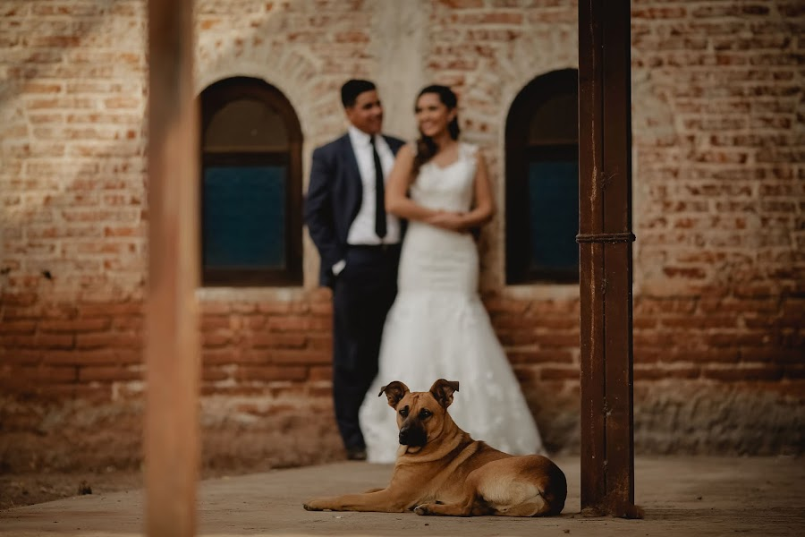 Wedding photographer Barbara Torres (BarbaraTorres). Photo of 27.01.2018