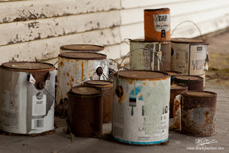 Photo: Paint Can Menagerie