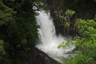 Photo: 鯛之川下流の竜神の滝