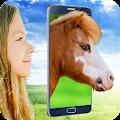 Pony Face Scanner joke