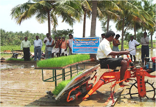 Photo: Innovative transplanter shared with SRI farmers at a System of Crop Intensification conference in Tamil Nadu, India, in February 2011. [Photo courtesy of B.J. Pandian]