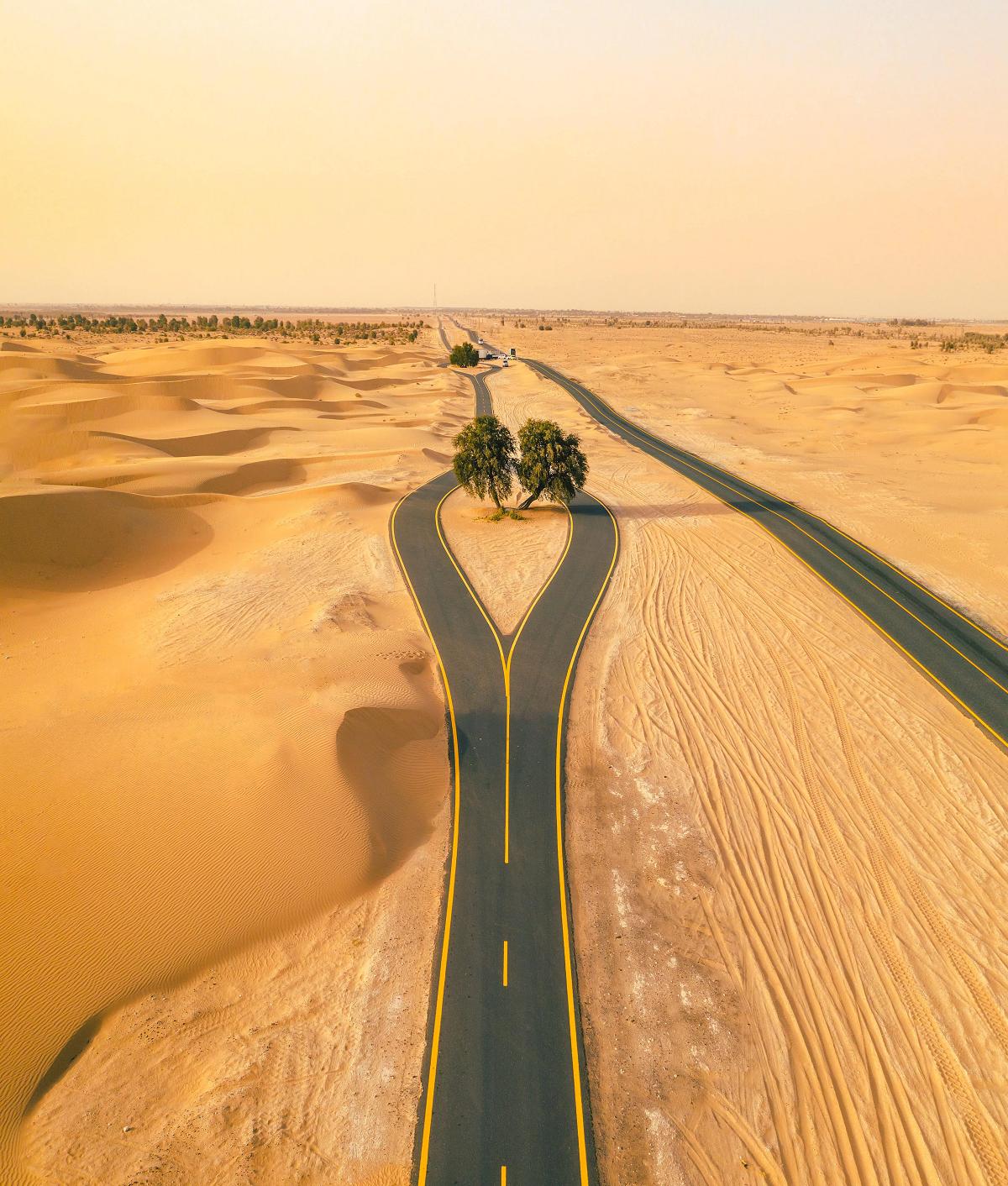 Além das ciclovias urbanas, também é possível conhecer Dubai pelo deserto. (Fonte: Visit Dubai/ Reprodução)