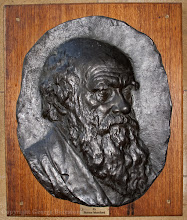 Photo: Portrait of Charles Darwin in Christ's College, Cambridge University. Copyright George Beccaloni.