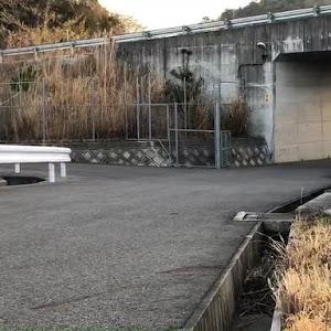フェアレディZ Z33 ベースグレード 平成19年 後期のカスタム事例画像 まむ さんの2020年03月23日21:53の投稿