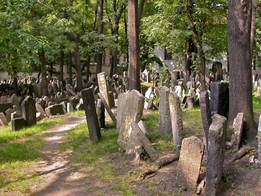 Prague: Jewish Cemetery di sdb-66