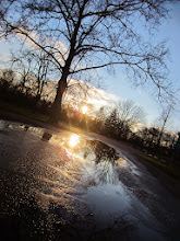 Photo: Sunlight reflected in a pond on the parking lot at Eastwood Park in Dayton, Ohio.