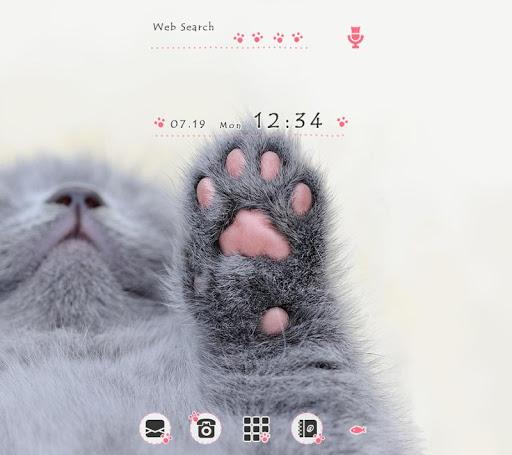CatWallpaper Kitty Paws Theme 1.0.0 Windows u7528 1