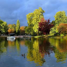 Autumn by Tomasz Budziak - City,  Street & Park  City Parks ( paris, autumn, parks, city,  )