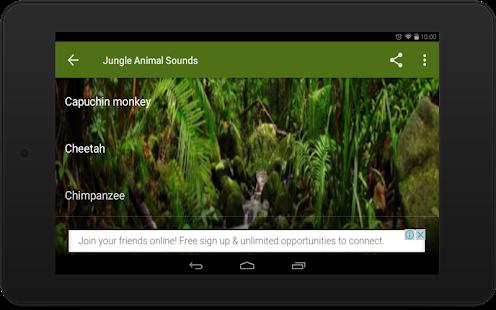 Jungle Animal Sounds - náhled