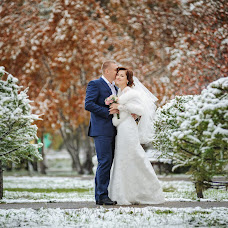 Wedding photographer Nikita Biserov (Dealer). Photo of 25.11.2015