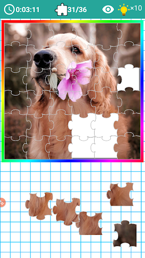 PICK and FIT JIGSAW 2019 1.08 screenshots 2