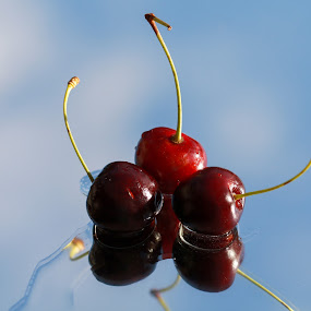 berries by Mona Martinsen - Food & Drink Fruits & Vegetables (  )