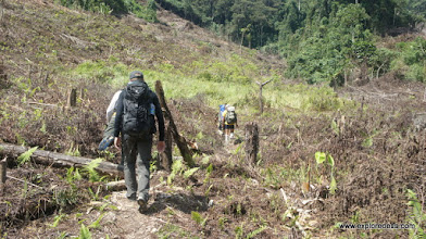 Photo: jungle trek to Data Opet, Muller Mountain