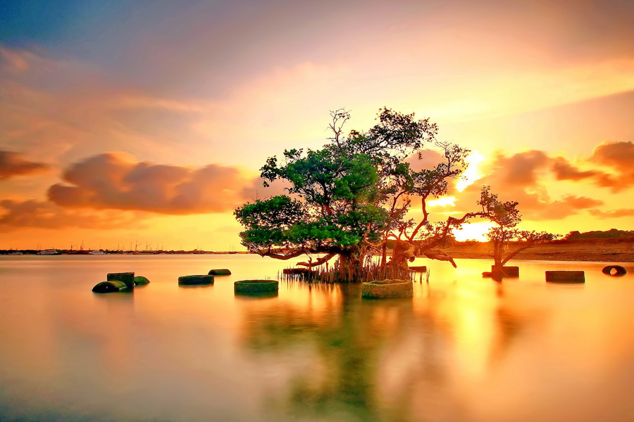 by Agoes Antara - Landscapes Waterscapes