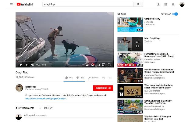 AutoCorgi - Youtube AutoPlay The Best