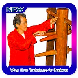 Wing Chun Techniques for Beginers