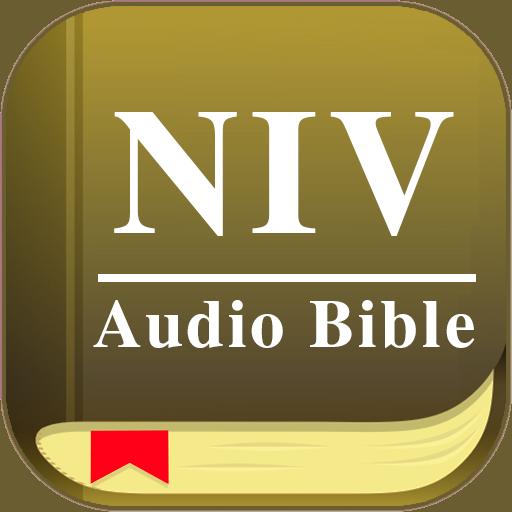 Audio Bible Offline NIV